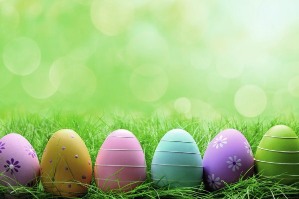 Ostern im Thüringer Wald- im LINDENHOF das Gelbe vom Ei!